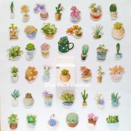 Planner Stickers - Cactus / Planten (set 50 stuks)