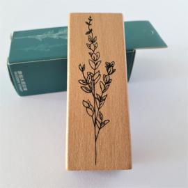 Vintage houten stempel - Botanisch gras 4
