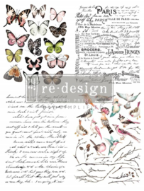 transfers parisian butterflies