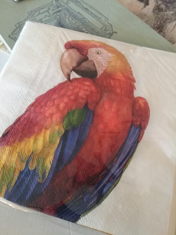 Papegaai  servetten