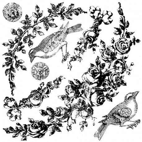 I.O.D Floral