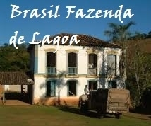 Brasil / Brazilië Fazenda de Lagoa (CERTIFICERING RAINFOREST ALLIANCE)
