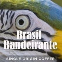 Brasil / Brazilië Bandeirante (dark)