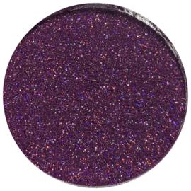 Glitter powder nr 13