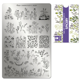 Moyra Stamping Plate 91 Spicery