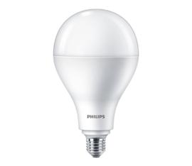 Philips Led Lamp Koud licht 6500K 28 Watt = 200 Watt