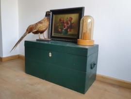 Vintage retro brocante scheepskist opbergkist groen salontafel