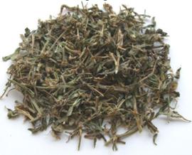 Bian Xu - Herba Polygoni Avicularis - Common Knotgrass Herb