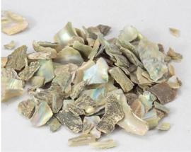 Shi Jue Ming - Concha Haliotidis - Sea Ear Shell - 100gr