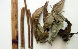 Ze Lan - Herba Lycopi - Hirsute Shiny Bugleweed Herb - 100gr