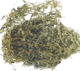 Chui Pen Cao - Herba Sedi - Stringy Stonecrop Herb 100gr