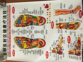 Chart of the foot reflective zones health therapy (Small)