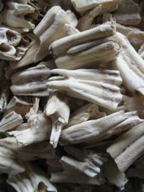 Long Chi Sheng - Fossilia Dentis Mastodi - Dragon's Tteeth  100gr