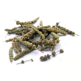 Jing Jie - Schizonepetae - Fineleaf Schizonepeta Flower 100gr