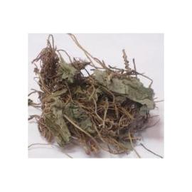 Xi Xin - Herba cum Radix Asari - Chinese Wild Ginger - 100gr