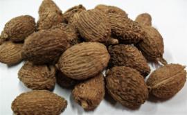 Sha Ren - Fructus Amomi - Villous Amomum Fruit - 100gr