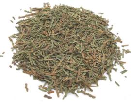 Ce Bai Ye  - Cacumen Platycladi Preparata - Chinese Arborvitae Twig and Leaf Prepared 100gr