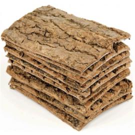 Du Zhong sheng - Cortex eucommiae - Eucommia bark 100 gr
