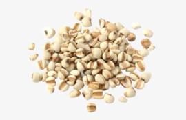 yi yi ren (sheng) - Semen coicis - coix seed 100 GR