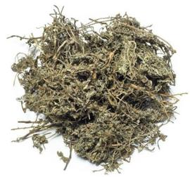 E Bu Shi Cao - Herba Centipedae - Small Centipeda Herb 100gr