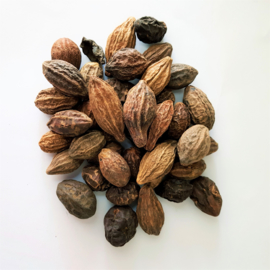 He Zi - Fructus Chebulae - Medicine Terminalia Fruit 100gr