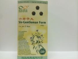Liu jun zi wan - Six-gentleman form