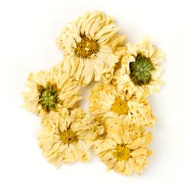 Ju Hua - Flos Chrysanthemi - Chrysanthemum Flower 100gr