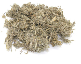 Yin Chen - Herba Artemisiae Scopariae - Virgate Wormwood Herb - 100gr