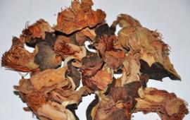 Mu Mian Hua - Flos Gossampini Common Bombax Flower - 100gr