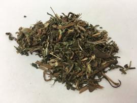 Pu Gong Ying - Herba Taraxaci - Dandelion - 100gr