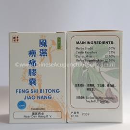 Feng Shi Bi Teng Jiao Nang - 风湿痹痛胶囊