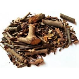 Sang Ji Sheng - Herba Taxilli - Chinese Taxillus Herb - 100gr