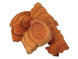 Ji xue teng - Caulis spatholobi - Suberect spatholobus stem - 100 gr