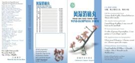 Feng shi xiao tong wan - Wind dampness form - 风湿消痛丸