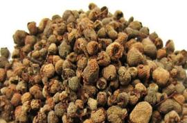 Fu pen zhi - Fructus tritici levis - Palmleaf raspberry fruit - 100 gr