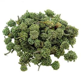 San qi Hua - Noto ginseng flower - 50 gram