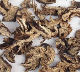 Sheng Ma - Rhizoma Cimicifugae - Largetrifoliolious Bugbane Rhizome - 100gr