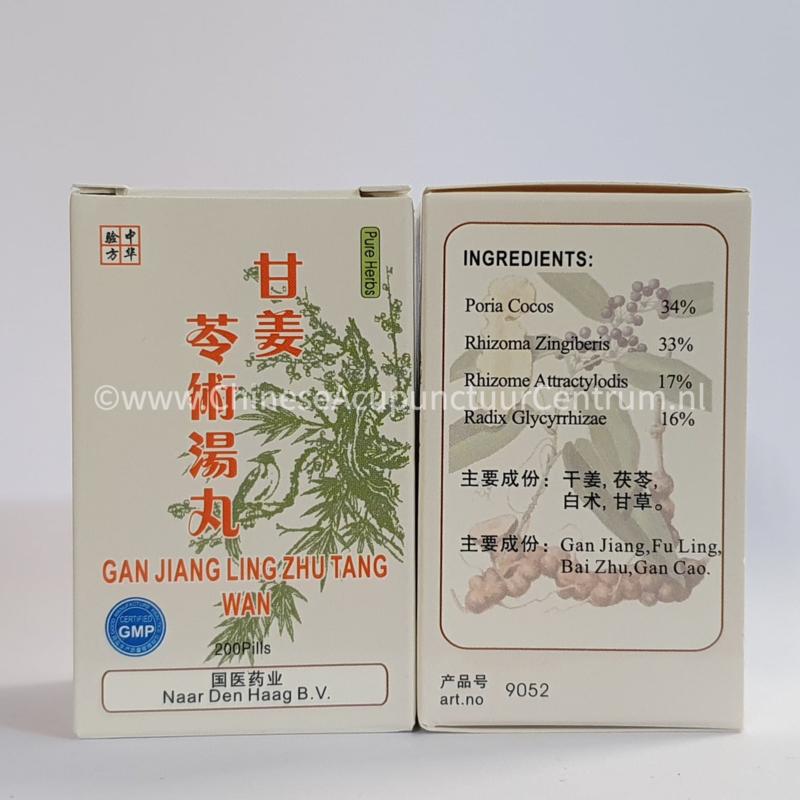 Gan Jiang Ling Zhu Tang Wan - 甘姜苓术汤丸