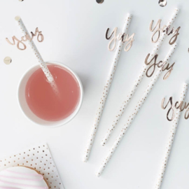 Ginger Ray paper straws dots 'Yay' Rosé