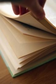 Een nieuwe kijk op de Protocollen Leesproblemen en Dyslexie