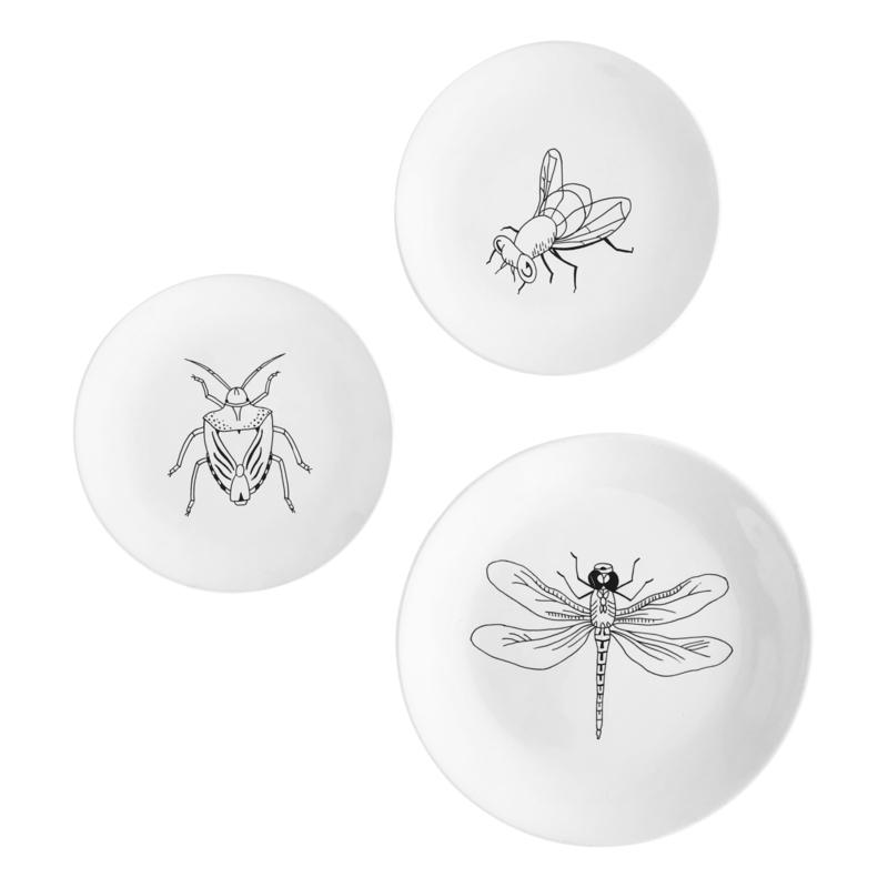 Set 'Insecten'