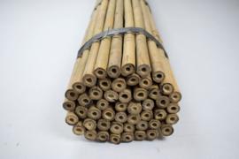 Bamboestokken - Tonkinstokken