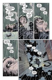 Batman Universe  5