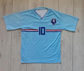 Replica Oranje / Nederlands elftal uitshirt (V. d. Vaart, 10) (Maat 164)