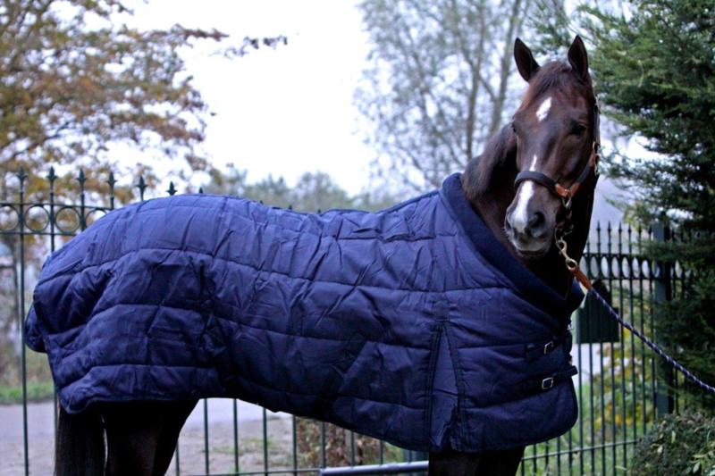 Luxe paarden winterdeken, 500 gram, 1200D, marineblauw