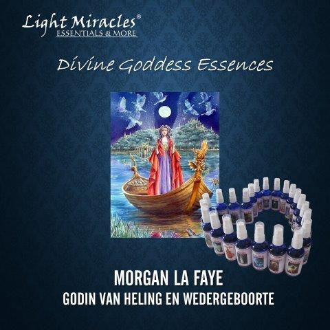 Morgan la Faye
