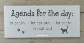 Tekstbord Agenda for the day, cat