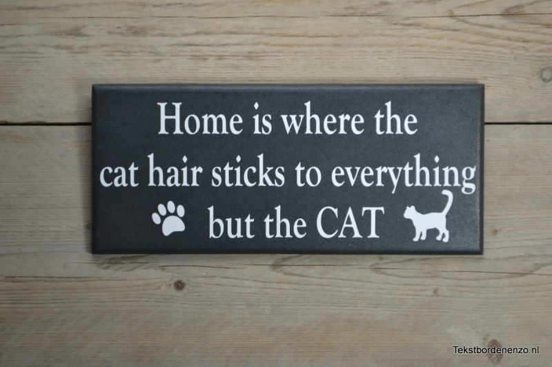 Tekstbord Home is where the cat hair sticks...
