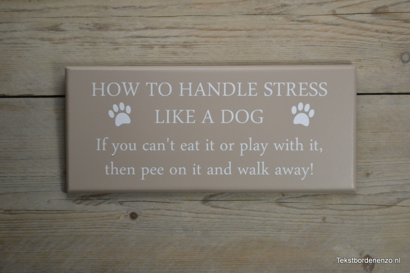 Tekstbord How to handle stress like a dog..