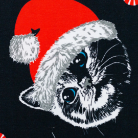 Tricot:  Kerstkat (Theo Swafing) , per 25 cm